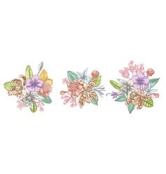 flower bouquet pastel laelia feijoa flowers vector image