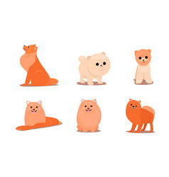 friendly brown fluffy dogs in different poses vector image