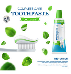 mint toothpaste dental care toothbrush and leaves vector image