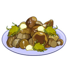 Pickled mushrooms on a plate vector