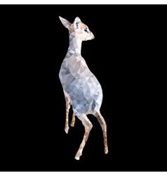 polygon of dik dik antelope vector image