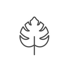 Tropical leaf line icon vector