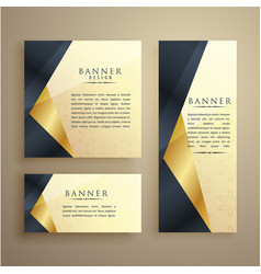 elegant set of three premium banners or card vector image vector image