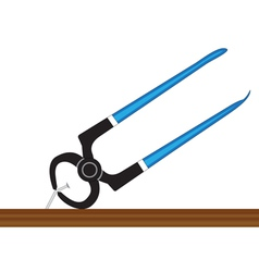 Pliers and nail vector image vector image