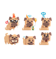 flat set of funny pug with different vector image