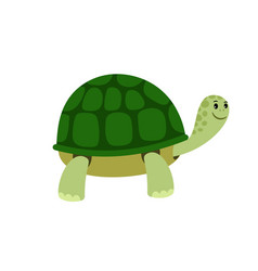 green cute turtle cartoon icon vector image
