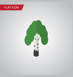 isolated birch flat icon timber element vector image
