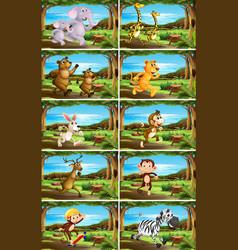 set animals in nature scenes vector image