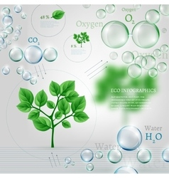 Bio infographics vector