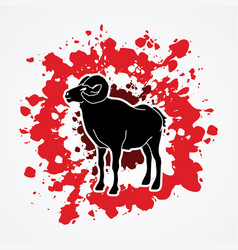 black sheep big horn ovis standing vector image