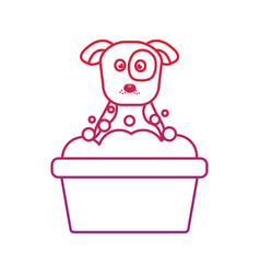 Dog or puppy in tub pet icon image bird tropic vector
