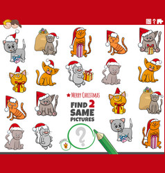 Find two same kittens characters educational task vector