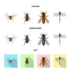 isolated object insect and fly logo collection vector image