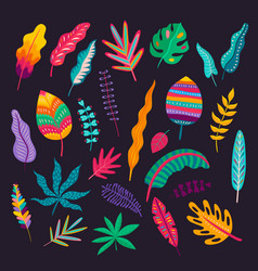 mexican style leaves and plants floral ornament vector image