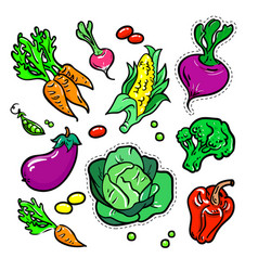 vegetables - isolated retro stickers set vector image