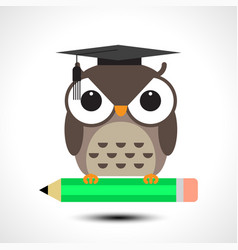 wise owl with pencil isolated on white background vector image