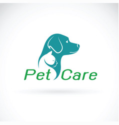 Pet care shop design on white background dog and vector