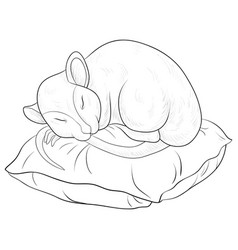Adult coloring bookpage a cute sleeping rat vector