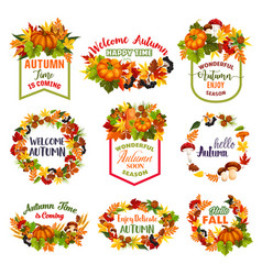 autumn time icons fall leaf pumpkin vector image