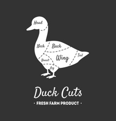 duck cuts fresh farm product poultry with meat vector image