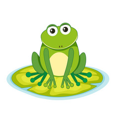 Frog on a lilypad vector