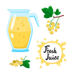 Juice with white currants in glass jug vector