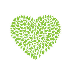 leaves heart shape logo design vector image