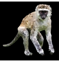 low poly monkey vector image
