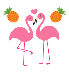 pineapple fruit set pink flamingo couple and vector image