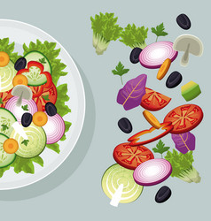 salad vegetables dish cooking restaurant vector image