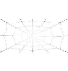 spider web cartoon black cobweb element isolated vector image