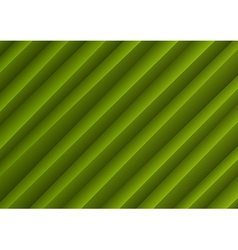 background creased layout green vector image