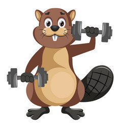 beaver with weights on white background vector image
