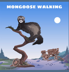 Cute poster in wild west style walking mongoose vector