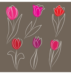hand drawn tulips set vector image vector image
