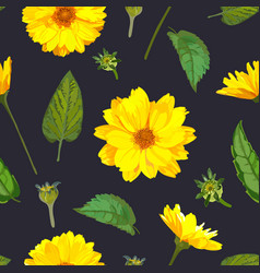 seamless pattern with chrysanthemums flowers on vector image