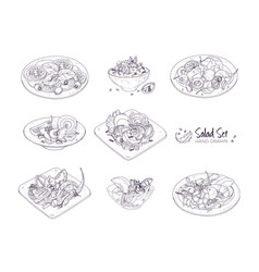Set of different salads served on plates and in vector