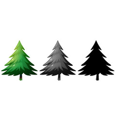 Set of pine tree vector