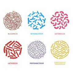 set probiotics icon concept logo and label vector image