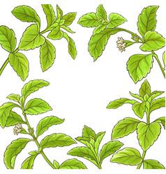 Stevia branch frame vector