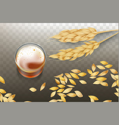 whiskey in glass and cereals grains vector image