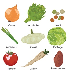 set vegetables isolated vector image vector image