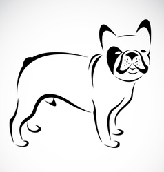 dog d1 vector image