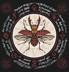 Banner with stag-beetle and old magic symbols vector