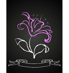 Chalk flower on blackboard vector
