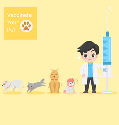dogs cat doctor with injection needle character vector image