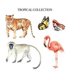 Element watercolor design with wild animals vector