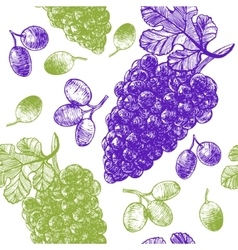 Grape Hand Draw Sketch Background Pattern vector image