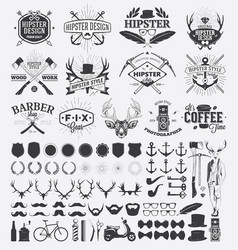 hipster style design elements and vintage labels vector image