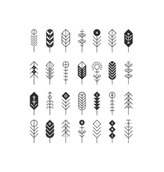 Line feathers and arrows vector